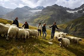 © Schweiz Tourismus_Giglio Pasqua